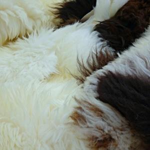 Co všechno můžeme vyrobit z ovčí vlny